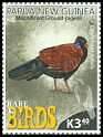 Cl: Pheasant Pigeon (Otidiphaps nobilis)(Endemic or near-endemic)  new (2017)