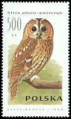 Cl: Tawny Owl (Strix aluco) <<puszczyk>> (Repeat for this country)  SG 3321 (1990) 40