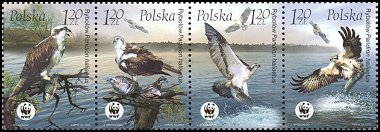 Cl: Osprey (Pandion haliaetus)(Repeat for this country)  SG 4096-9 (2003)