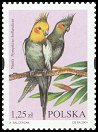 Cl: Cockatiel (Nymphicus hollandicus)(Out of range and no other stamp)  SG 4125 (2004)