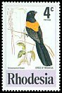 Cl: Yellow-shouldered Widowbird (Euplectes macrourus) SG 538 (1977) 20