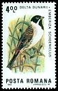 Cl: Reed Bunting (Emberiza schoeniclus) SG 4799 (1983) 140