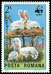 Cl: Dalmatian Pelican (Pelecanus crispus)(Repeat for this country)  SG 4902 (1984)