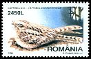 Cl: Eurasian Nightjar (Caprimulgus europaeus) <<Caprimulgul>> (Repeat for this country)  SG 5953 (1998)
