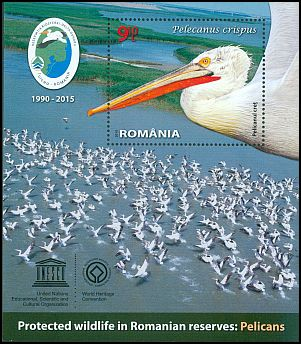 Cl: Dalmatian Pelican (Pelecanus crispus)(Repeat for this country)  new (2015)