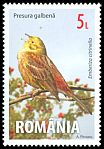 Cl: Yellowhammer (Emberiza citrinella) <<Presura galbena>>  new (2015)