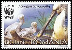 Cl: Eurasian Spoonbill (Platalea leucorodia)(Repeat for this country)  SG 6731 (2006)