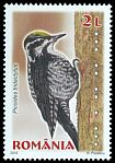 Cl: Eurasian Three-toed Woodpecker (Picoides tridactylus)(Repeat for this country)  new (2015)
