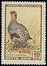 Cl: Grey Partridge (Perdix perdix) SG 2057a (1957) 25 [5/32]