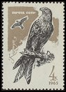Cl: Red Kite (Milvus milvus) SG 3220 (1965) 8 [2/18]