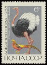 Cl: Ostrich (Struthio camelus)(Out of range)  SG 3611 (1968) 35 [2/18]