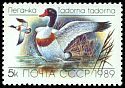 Cl: Common Shelduck (Tadorna tadorna) SG 6011 (1989)