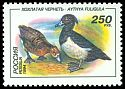 Cl: Tufted Duck (Aythya fuligula) SG 6488 (1994)