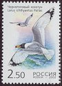 Cl: Great Black-headed Gull (Larus ichthyaetus) SG 7114 (2002)