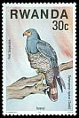 Cl: African Harrier-Hawk (Polyboroides typus) <<Petit serpentaire>>  SG 834 (1977) 8