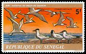 Cl: Caspian Tern (Sterna caspia) <<Sternes Caspiennes>> (Repeat for this country)  SG 658 (1978)