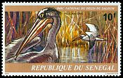 Cl: Pink-backed Pelican (Pelecanus rufescens) <<Pelican gris>>  SG 659 (1978) 12