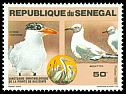 Cl: Great White Pelican (Pelecanus onocrotalus)(Repeat for this country)  SG 729 (1981)