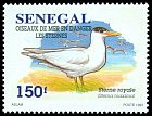 Cl: Royal Tern (Sterna maxima) <<Sterne royal>>  SG 1393 (1995) 125