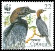 Cl: Pygmy Cormorant (Phalacrocorax pygmeus)(I do not have this stamp)  SG 490 (2011)  [7/11]