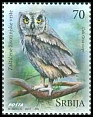 Cl: European Scops-Owl (Otus scops) SG 818 (2017)