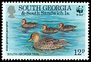Cl: Yellow-billed Pintail (Anas georgica)(Repeat for this country)  SG 216 (1992)