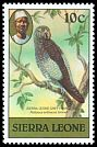 Cl: Grey Parrot (Psittacus erithacus timneh) SG 627 (1980) 15