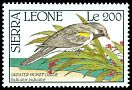 Cl: Greater Honeyguide (Indicator indicator) SG 1482 (1990)