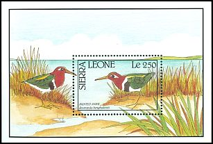 Cl: Greater Painted-snipe (Rostratula benghalensis) SG 1483b (1990)