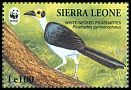 Cl: White-necked Rockfowl (Picathartes gymnocephalus)(Repeat for this country)  SG 2151 (1994)