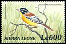 Cl: Golden-breasted Bunting (Emberiza flaviventris)(Out of range)  SG 3128 (1999)
