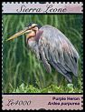 Cl: Purple Heron (Ardea purpurea)(Repeat for this country) (I do not have this stamp)  SG 4790d (2012)  [8/3]