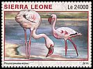 Cl: Lesser Flamingo (Phoenicopterus minor)(I do not have this stamp)  new (2016)