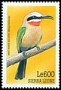 Cl: White-fronted Bee-eater (Merops bullockoides)(Out of range)  SG 3087 (1999)