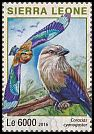 Cl: Blue-bellied Roller (Coracias cyanogaster)(I do not have this stamp)  new (2016)
