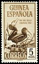 Cl: Brown-cheeked Hornbill (Ceratogymna cylindricus) SG 371 (1952) 25