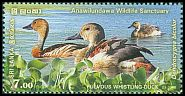 Cl: Fulvous Whistling-Duck (Dendrocygna bicolor) SG 2348 (2016)  [10/12]