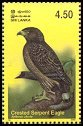 Cl: Crested Serpent-Eagle (Spilornis cheela) SG 1661 (2003)  [2/15]