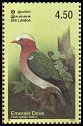 Cl: Emerald Dove (Chalcophaps indica) SG 1669 (2003)  [2/15]