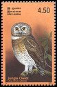 Cl: Jungle Owlet (Glaucidium radiatum) SG 1663 (2003)  [2/15]