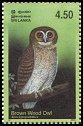 Cl: Brown Wood-Owl (Strix leptogrammica) SG 1660 (2003)  [2/15]