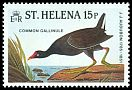 Cl: Common Moorhen (Gallinula chloropus) SG 465 (1985) 45