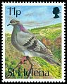 Cl: Rock Pigeon (Columba livia)(Introduced)  SG 638 (1993) 55