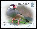 Cl: Java Sparrow (Padda oryzivora)(Repeat for this country)  SG 1239 (2015)  [10/16]
