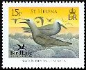 Cl: Black Noddy (Anous minutus) SG 1028 (2007)  [4/17]