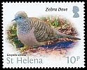 Cl: Zebra Dove (Geopelia striata)(Introduced)  SG 1236 (2015)  [10/16]