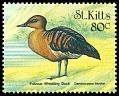 Cl: Fulvous Whistling-Duck (Dendrocygna bicolor) SG 532 (1999)