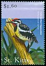 Cl: Yellow-bellied Sapsucker (Sphyrapicus varius)(Out of range)  SG 608 (2001)