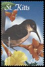 Cl: Brown Trembler (Cinclocerthia ruficauda)(Endemic or near-endemic)  SG 656 (2001)