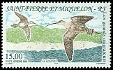 Cl: Whimbrel (Numenius phaeopus) SG 746 (1996)